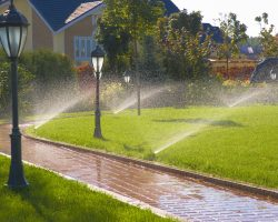 Automatic Garden Sprinkler: The Complete Guide Of Buying Sprinkler