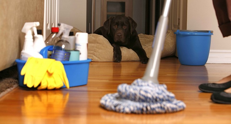 Helpful Tips To Buy Cheap Cleaning Supplies For Your Home
