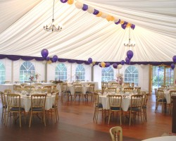Why Party Lovers Prefer Marquees For Their Venues?