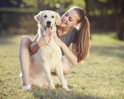What To Consider When Looking For A Pet Sitter?