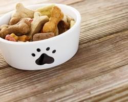 A Fantastic Range Of Super Premium Dog Food